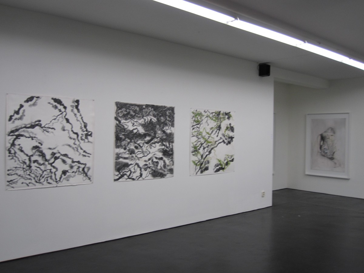 Lucy Borghouts, Space 1